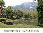botanical gardens in rio de...   Shutterstock . vector #1271631895