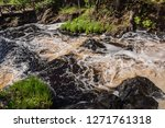 the tahmajoki river flows from...   Shutterstock . vector #1271761318