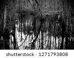 north carolina farm life | Shutterstock . vector #1271793808