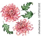 Watercolor Chrysanthemum Set ...
