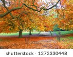 a colourul autumn landscape. | Shutterstock . vector #1272330448