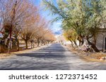 a road and the colorful of... | Shutterstock . vector #1272371452