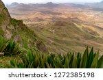 green vegetation on monte verde'... | Shutterstock . vector #1272385198