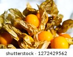 group of cape gooseberry  phys... | Shutterstock . vector #1272429562