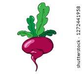 turnip  beets. vector of a beet ... | Shutterstock .eps vector #1272441958