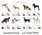 hunting dogs collection... | Shutterstock .eps vector #1272467965