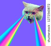 Small photo of Evil Cat with rainbow lasers from eyes. Minimal collage fashion concept