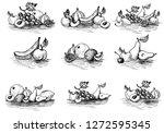 vector ink drawing fruits ... | Shutterstock .eps vector #1272595345