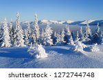 frost covered trees in the... | Shutterstock . vector #1272744748