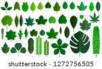 green leaves set isolated on... | Shutterstock .eps vector #1272756505