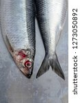 Stock photo fresh wet silver herring fishes with contransting red eyes on silver plate macro close up shot 1273050892