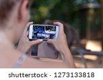 tourist girl taking the photos... | Shutterstock . vector #1273133818