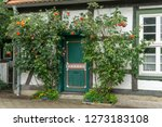 roses growing around the... | Shutterstock . vector #1273183108