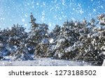 snowflakes falling from the sky.... | Shutterstock . vector #1273188502