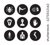 9 vector icon set   pertussis ... | Shutterstock .eps vector #1273312162
