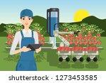 robot sweeper picks tomatoes.... | Shutterstock .eps vector #1273453585