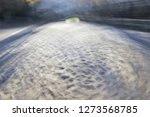 tribute to monet and ernst hass ... | Shutterstock . vector #1273568785