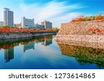 autumn scenery and modern... | Shutterstock . vector #1273614865