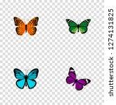 set of moth realistic symbols... | Shutterstock .eps vector #1274131825