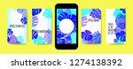 stories template design. tropic ... | Shutterstock .eps vector #1274138392