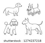 dogs of different breeds in... | Shutterstock .eps vector #1274237218