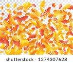 oak  maple  wild ash rowan... | Shutterstock .eps vector #1274307628