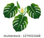 dark green leaves with flower... | Shutterstock .eps vector #1274321668
