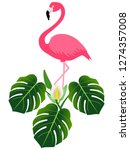 pink flamingo and monstera or... | Shutterstock .eps vector #1274357008
