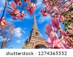 eiffel tower with blossom of... | Shutterstock . vector #1274365552