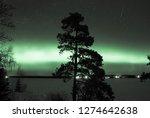 night sky view of beautiful... | Shutterstock . vector #1274642638