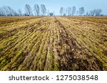 wide view of agriculture... | Shutterstock . vector #1275038548