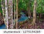 tha pom khlong song nam ... | Shutterstock . vector #1275154285