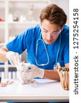 vet doctor examining kittens in ... | Shutterstock . vector #1275254158