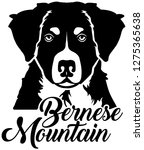 bernese mountain head with name   Shutterstock .eps vector #1275365638