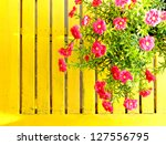 beautiful flowers on the table | Shutterstock . vector #127556795