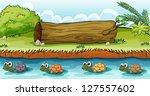 illustration of turtles in the... | Shutterstock . vector #127557602