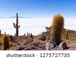salar de uyuni view from... | Shutterstock . vector #1275727735