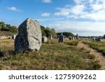 megalithic site of carnac ... | Shutterstock . vector #1275909262