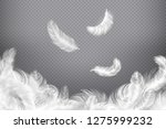 white feather background.... | Shutterstock .eps vector #1275999232