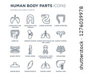 16 linear human body parts... | Shutterstock .eps vector #1276039978