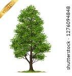 isolated trees on white... | Shutterstock .eps vector #1276094848