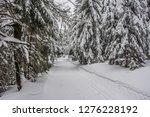 fairy tale winter in the... | Shutterstock . vector #1276228192