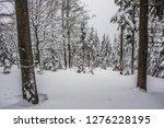 fairy tale winter in the... | Shutterstock . vector #1276228195