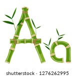 bamboo letter a with young... | Shutterstock .eps vector #1276262995