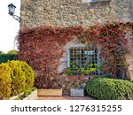an old castle entwined with red ... | Shutterstock . vector #1276315255