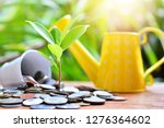 plant coins saving growth up to ...   Shutterstock . vector #1276364602