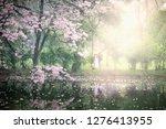 pink flower on blurred greenery ... | Shutterstock . vector #1276413955