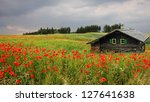 Picturesque Landscape With Red...