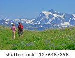 young couple in colorful lupine ... | Shutterstock . vector #1276487398