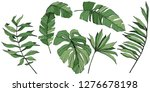 vector exotic tropical hawaiian ...   Shutterstock .eps vector #1276678198